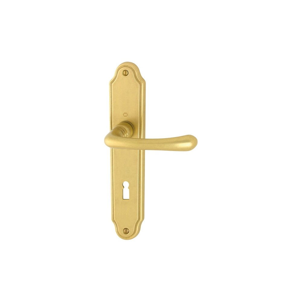 Hoppe Antique Door Handle With Plate Lisboa Series
